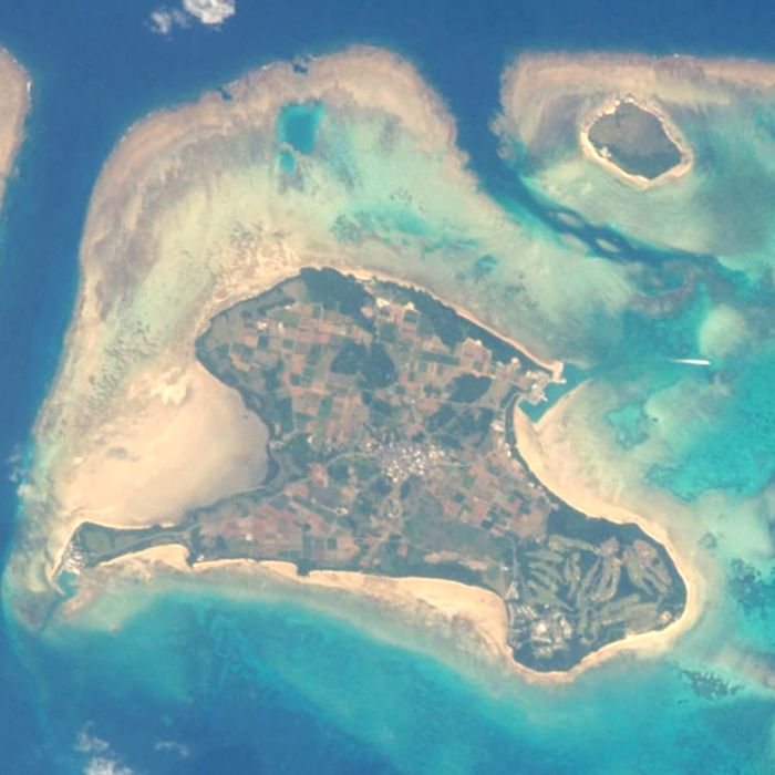 kohamajima-island-in-yaeyama-islands
