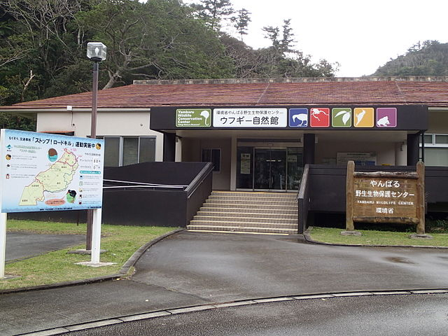 yambaru-wildlife-conservation-center-ufugi-nature-museum-in-northern-okinawa